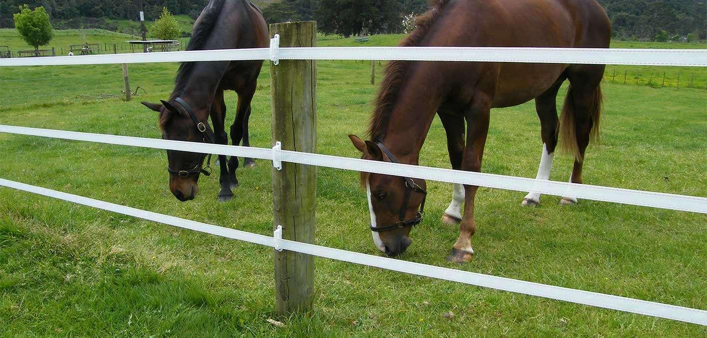 Alt til Elhegn til hestehegn og hestehegn