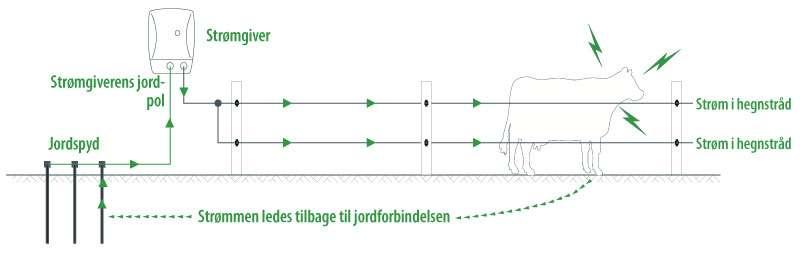 Jordforbindelse til elhegn - skitse af det sluttede kredsløb