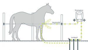 Hvordan fungerer et elhegn? Læs her